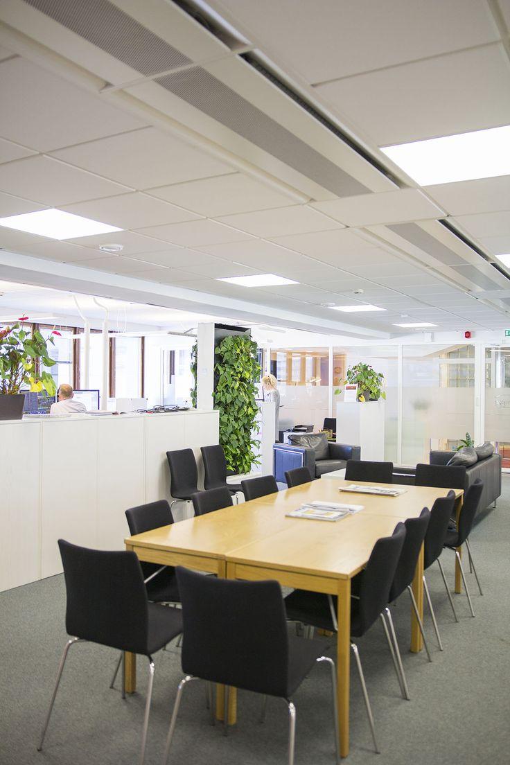 Naava Duo smart green wall in Carnegie office