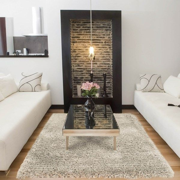 Shaggy Living Room Rug For Home Decor Inspiration