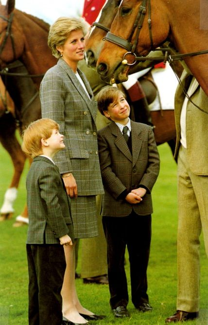 Princess Diana, Prince William, Prince ...