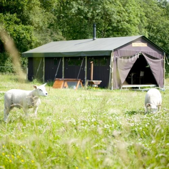 Het Betere BoerenBed, bijzonder overnachten bij de boer in Nederland. Luxe kamperen in ingerichte tenten op de boerderij. De mooiste locaties in Nederland