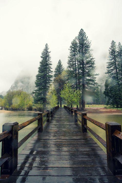 Yosemite National Park.  Home.