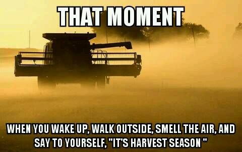 Yep... U can smell it in the air!