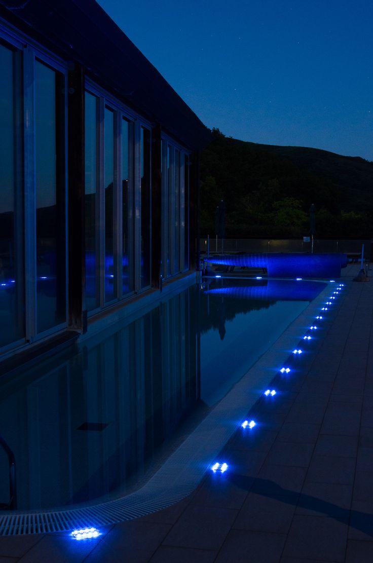 GECO blu in piscina.