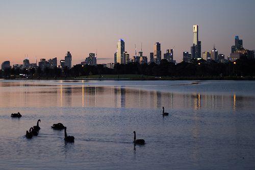 Albert Park Lake, Melbourne. One of my favourite walks!