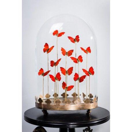 Globe en verre avec 9 papillons rouges Objets de curiosité - Décoration intérieure by Frenchrosa
