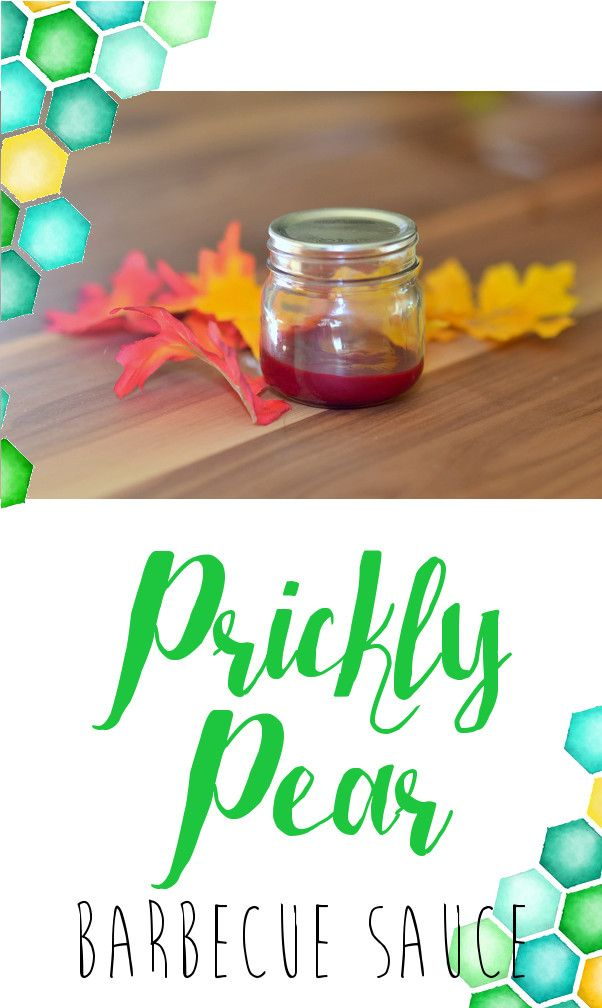 Pinstrosity: Prickly Pear Barbecue Sauce