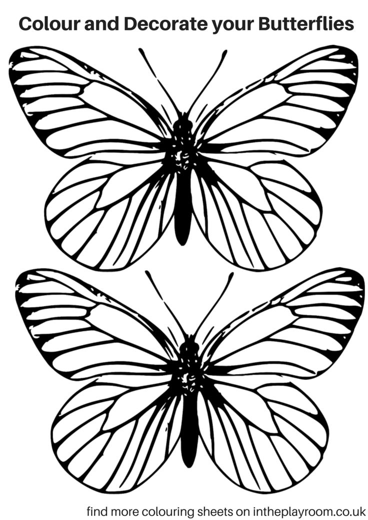 butterfly colouring pages - print and use on cards