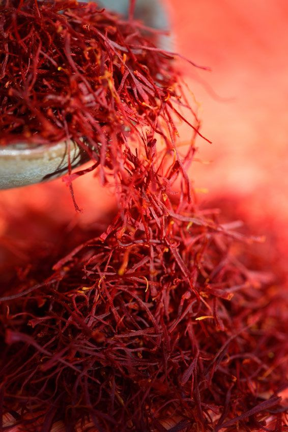 Saffron - Human cultivation and use of saffron spans more than 3,500 years and many cultures, continents, and civilizations. Saffron, a spice derived from the dried stigmas of the saffron crocus (Crocus sativus), has remained among the world's most costly substances throughout history. Saffron is especially good when used in cooking seafood dishes such as bouillabaisse and paella. It is also used in risotto and other rice dishes, with meat and poultry.