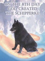 ...and on the 8th day, God created the Schipperke!