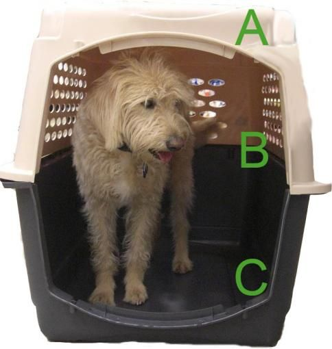 Finding The Right Pet Travel Crate | Pet Relocation | pet travel info | Pet Relocation