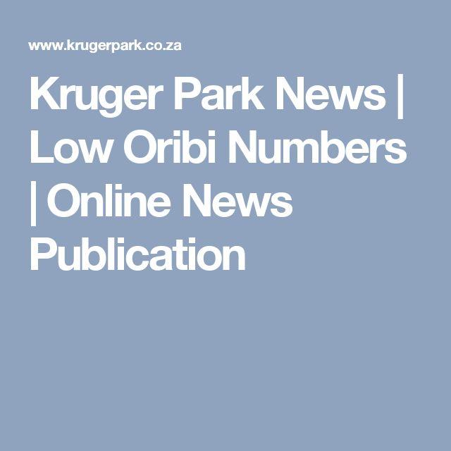 Kruger Park News   Low Oribi Numbers   Online News Publication