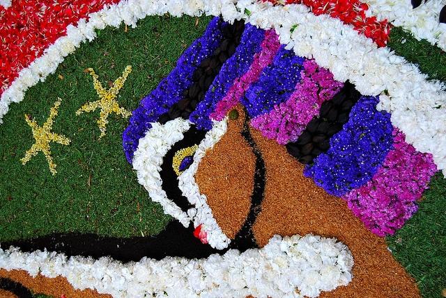 17 mejores im genes sobre alfombras de flores naturales en pinterest antigua guatemala - Alfombras portugal ...