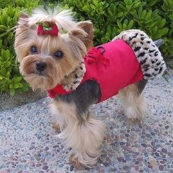 Luxury ratchet tiny dog clothes for the woman's lonely soul.   Frilly hairpin free of charge.