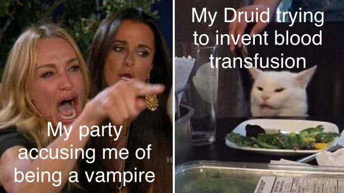 Pin by Richard Mathias on Dungeons and dragons | Memes, Smudging, Cat memes