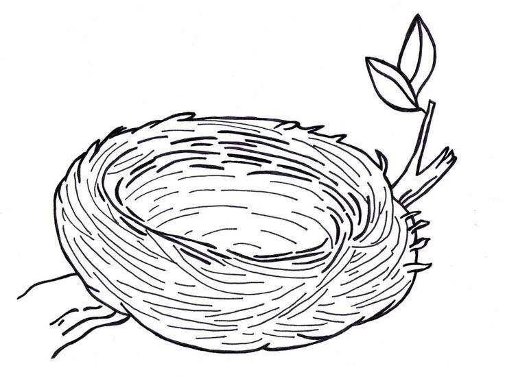 Top 25 best Bird clipart ideas on Pinterest Doodle lettering