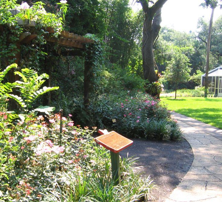 Sunken Gardens, St. Petersburg FL