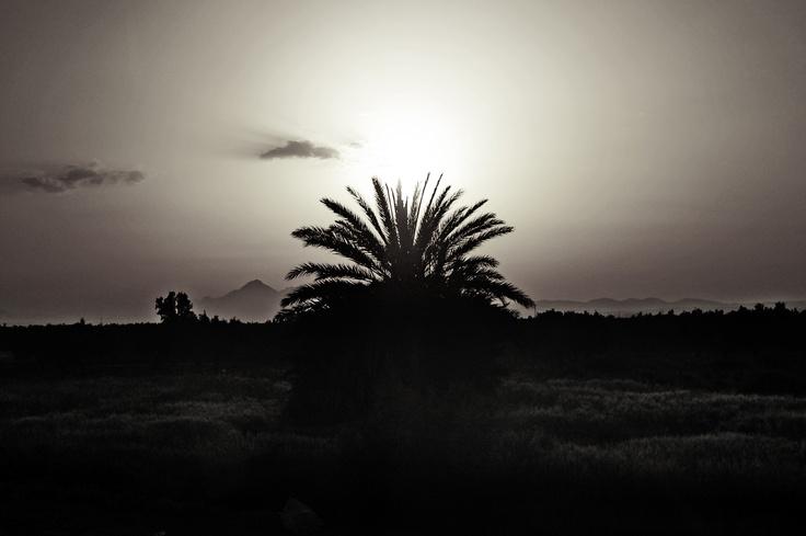 """Serie de fotográfias de Tunez  Tunez 009  """"Atardecer"""""""