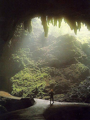 Camuy Caverns is located in Camuy, Puerto Rico. Camuy was founded in 1807 disassociated from Arecibo by Petrolina Matos.