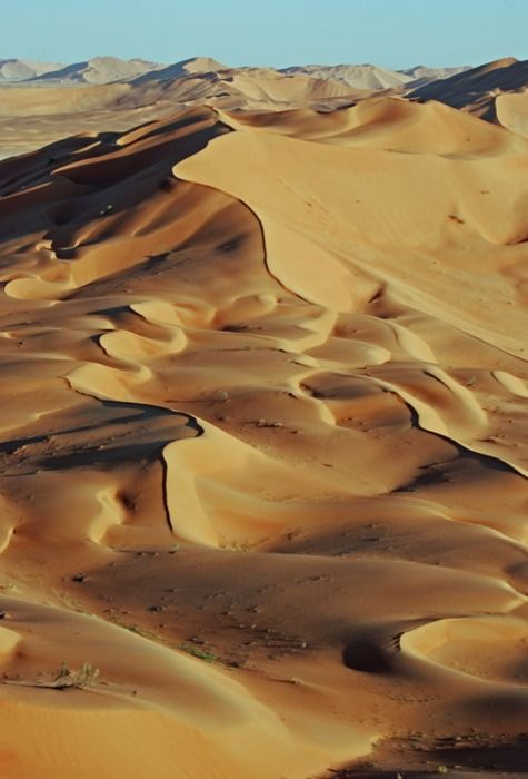 Desert Dreamer Cape Town, South Africa