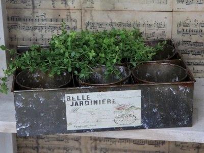 Krukor i plåtlåda med textetikett. Vacker att plantera kryddor i.  25X35cm