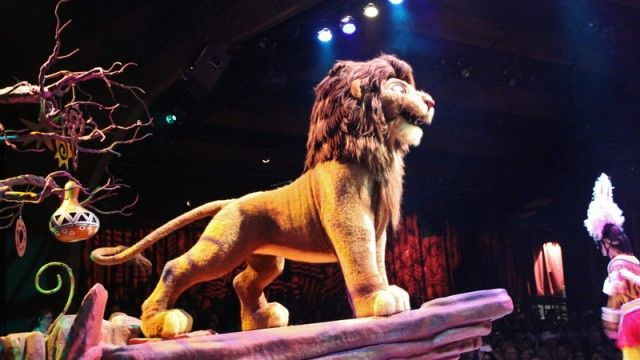 Top 10 things about Animal Kingdom