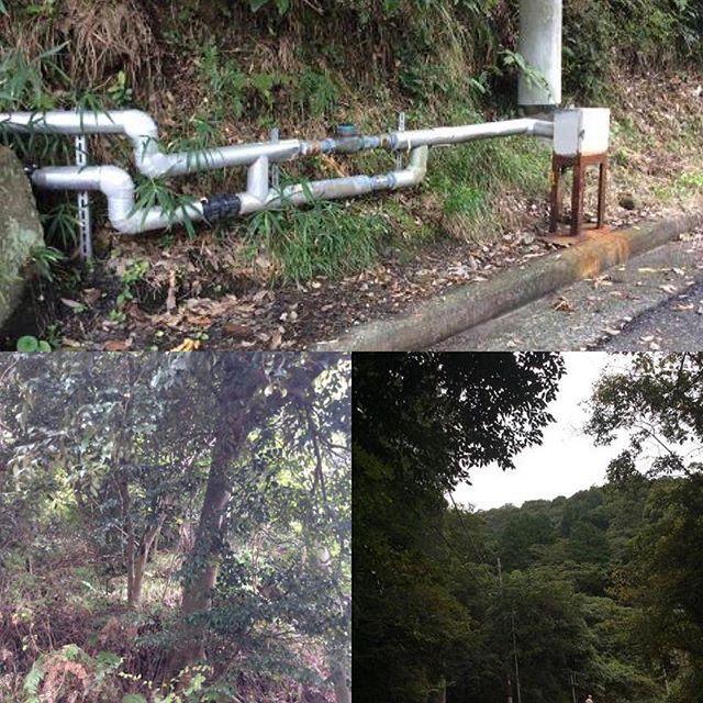 2016/11/02 05:52:59 onsentakuhai 当源泉井戸は、熱海市上多賀の山の中に有りまして、大型タンクローリーが横付け出来る場所まで配管をしています。  熱海で一番濃度の濃い源泉で32110ppmという天然高濃度源泉です。  国が定めている温泉法の定義では、温泉成分濃度が1000ppm以上が温泉と定められていますので、国が定めている定義の32倍の温泉成分濃度になります。  ホームページ www.youingnet.jp/  フェイスブック www.facebook.com/youingnet.jp  #温泉 #温泉大好き #天然温泉 #入浴 #入浴剤 #温泉ソムリエ #温泉宅配 #温泉宅配もやってます #温泉♨️ #温泉最高 #温泉効果 #血行 #血行促進 #血行不良 #血行改善 #血行#美容 #美容と健康 #美容家 #美容マニア #美容効果 #美人の湯 #美肌効果 #美肌 #美肌ケア #美白 #ペット温泉 #犬の温泉 #犬 #ボディーケア #ケア 秘湯温泉宅配 湯~イングネット・有限会社ユーイング #美容