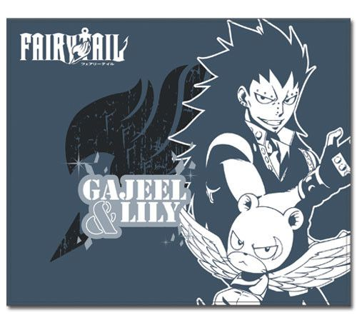 Fairy Tail Gajeel and Lily Season 4 Throw Blanket Team up with Gajeel and Lily in this Season 4 blanket from the hit anime Fairy Tail. No matter if you're cold or looking to just lay around and be com