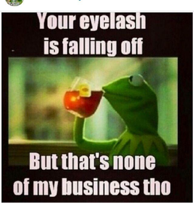 14 Best Images About Kermit On Pinterest