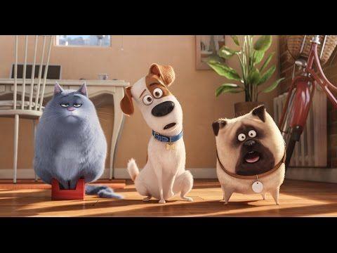 Тайная жизнь домашних животных The Secret Life of Pets часть 2 - YouTube