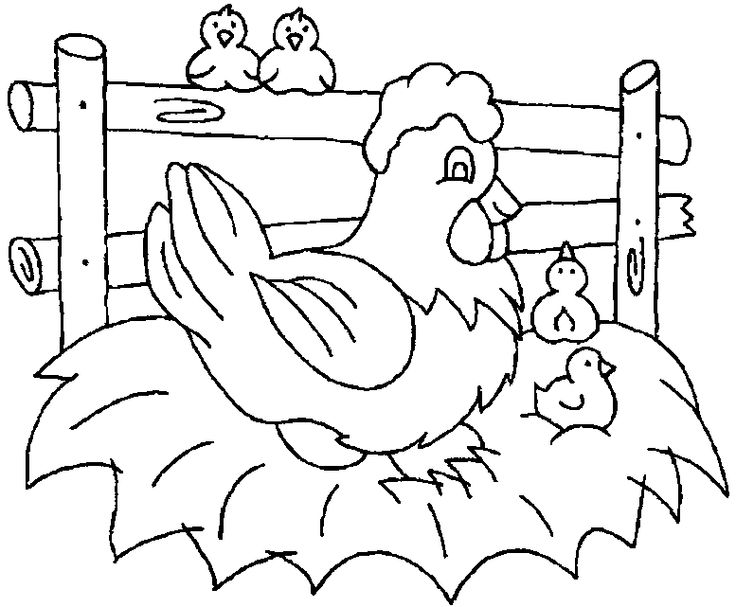 Free printable chicken coloring pages