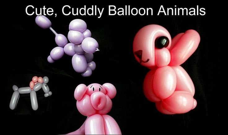 Animal Balloons for Windows 8 and 8.1