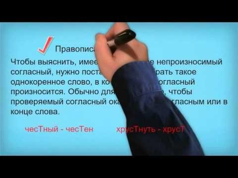 Основные правила русского языка(грамматика)