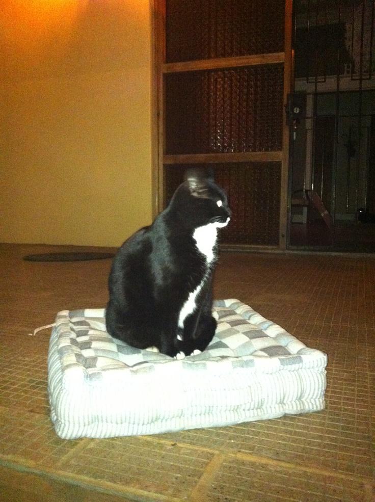 Ok who shrunk my mattress ????
