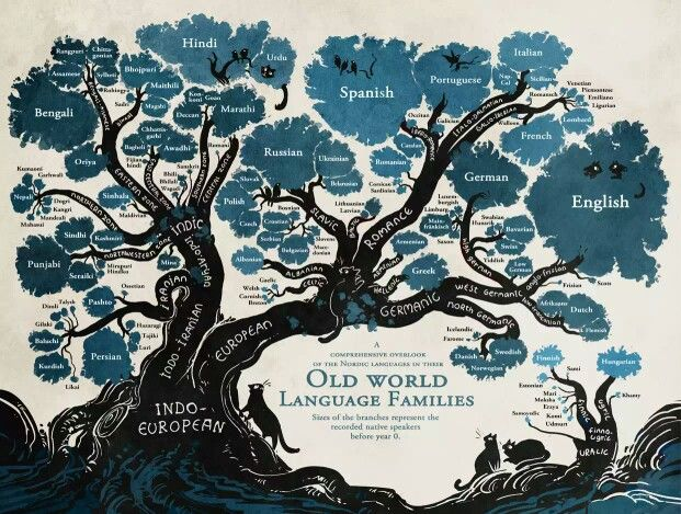 Linguistic family tree reveals the roots of Nordic languages.
