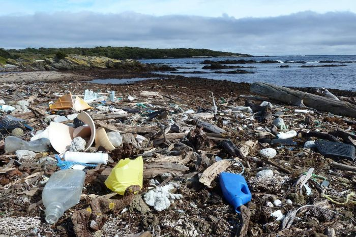 """Green Island was described as the """"worst ever"""" beach the volunteers had encountered"""