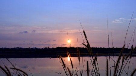 Sunardi: Sunset time at the river Kanal Banjir Timur Bekasi