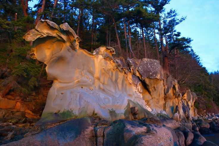 Sandstone cliffs at Larabee State Park.  Located on the Puget Sound between the cities of Burlington and Bellingham along Chuckanut Dr  RT11...