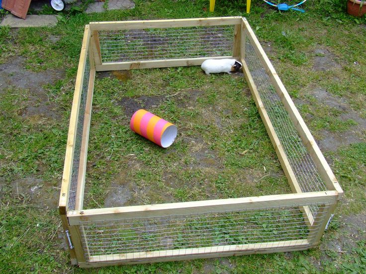 """Hello! My daughter recently rescued a Guinea Pig which had been left inside its hutch in a shed. I decided to let it have some freedom by building it a large run. This Instructable shows the steps to make a simple, cheap sectional run for a Guinea Pig or Rabbit. The whole project cost me only £15. The nearest thing I can find to this run retails at about £60! The materials you will need are: 6 Lengths of 2""""x1"""" smoothish sawn timber in 1.8M lengths. 32 2.5"""" Coun..."""