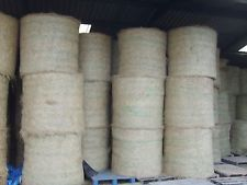 Hay for sale, round bale