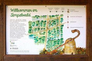 Attraktion im Tempelwald