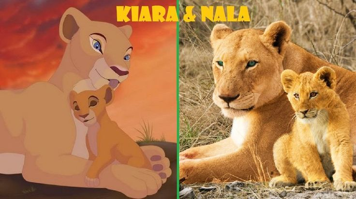 THE LION KING CHARACTERS IN THE REAL LIFE 2017