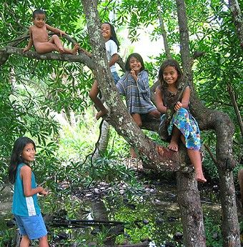 Nauru children in tree