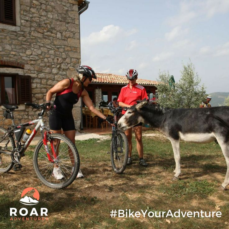 Cycling through unexplored Istria. Another way to #BikeYourAdventure with Roar Adventures.   Win a bicycle tour for 2 & more here: http://roa.rs/2o3Dzhd