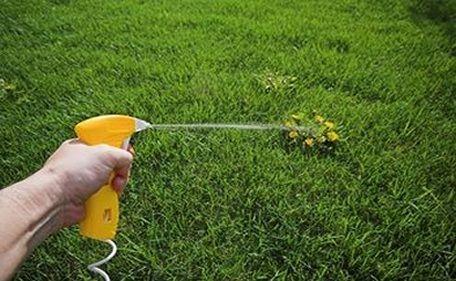 """Num jardim, numa horta ou numa quinta existem muitas zonas de convívio, trabalho e passagem onde crescem persistentemente as chamadas """"ervas daninhas"""". Muitas vezes é apetecível recorrer a herbicidas químicos para manter estes locais limpos, no entanto os mesmos infiltram-se e prejudicam o solo e até caudais de água subterrâneos. Recorrendo ao vinagre pode evitar...  Read more »"""