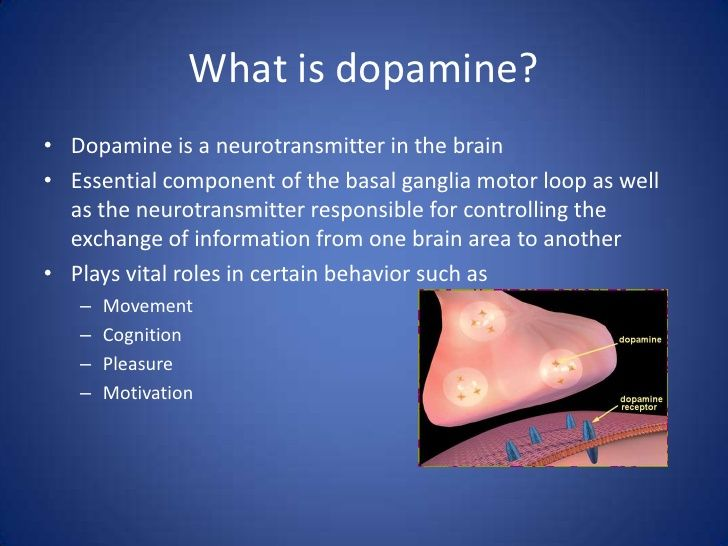 Theanine dopamine research paper
