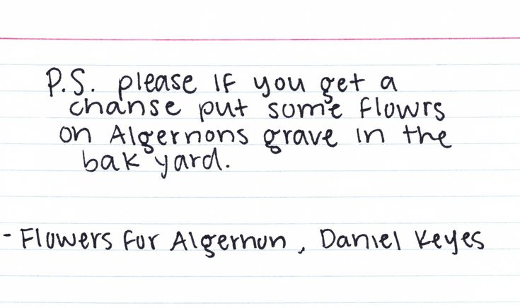 reader response about the book flowers for algernon Here is a unit designed to engage my students, for one of my favorite pieces of literature, flowers for algernon.
