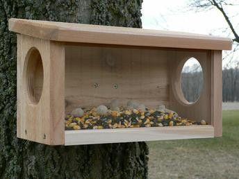 little live pets bird instructions
