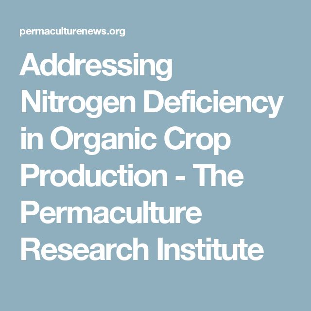 Addressing Nitrogen Deficiency in Organic Crop Production - The Permaculture Research Institute