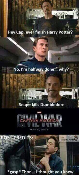 Avengers / Harry Potter
