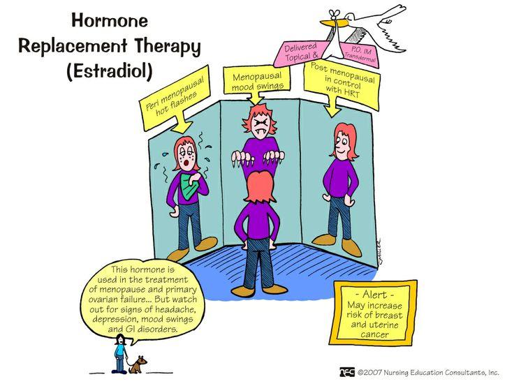 Hormone+Replacement+Therapy+(Estrogen).jpg 1,018×765 pixels